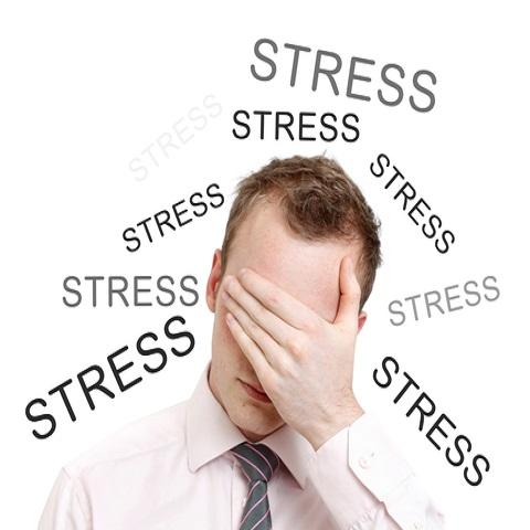Stress Profile